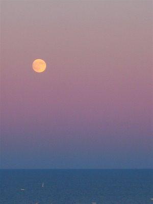 MoonRise4_FULL